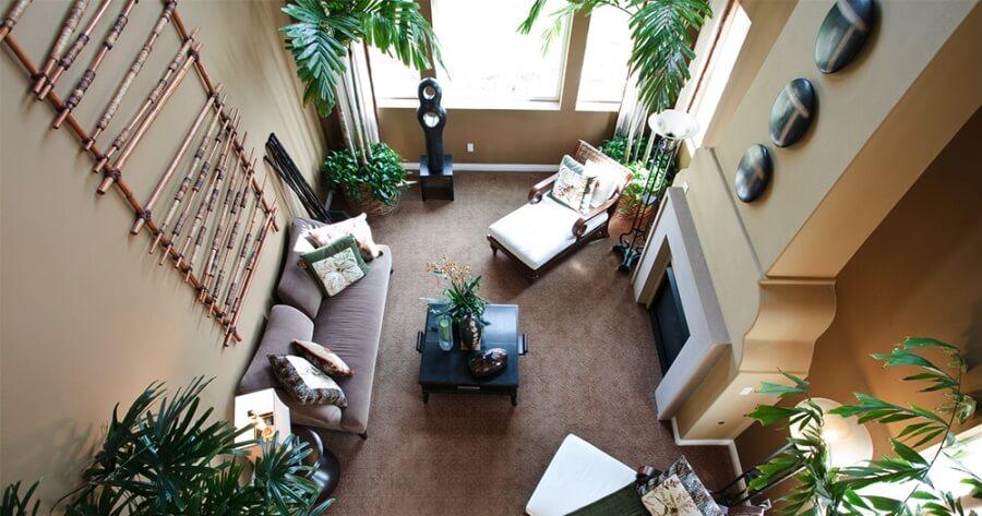 Растения в интерьере большой гостиной