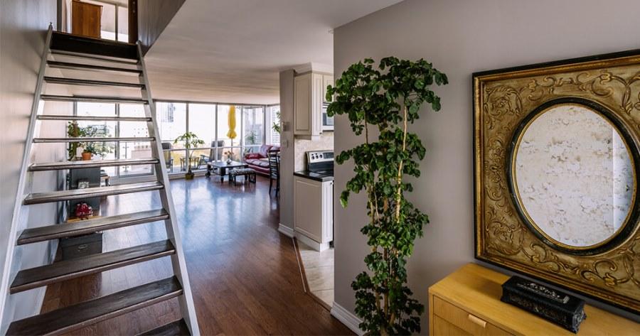 Большое растение в коридоре
