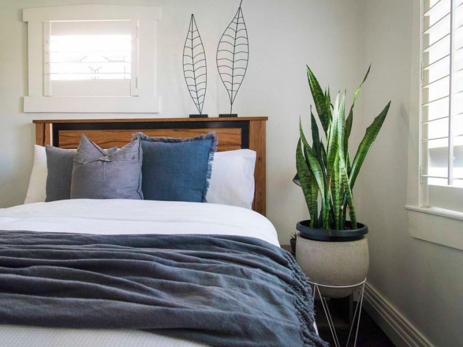Кровать и цветок на подставке в спальне