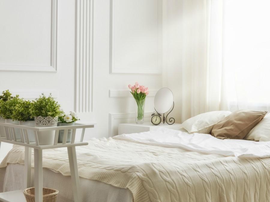 Комнатные цветы в спальне