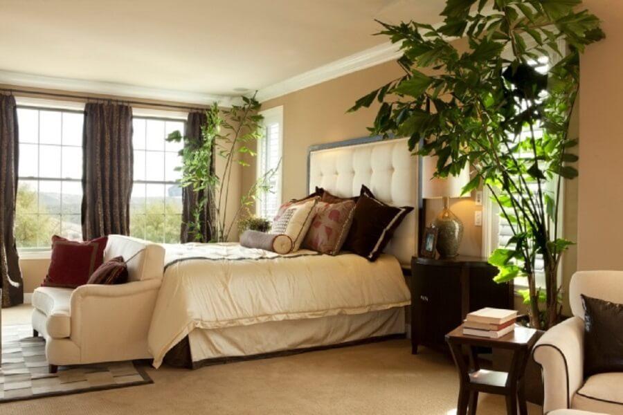 Комнатные растения в спальне