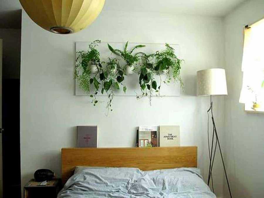 Интерьер спальни с комнатными растениями