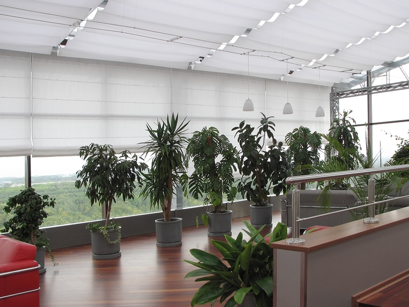 Система зимних садов