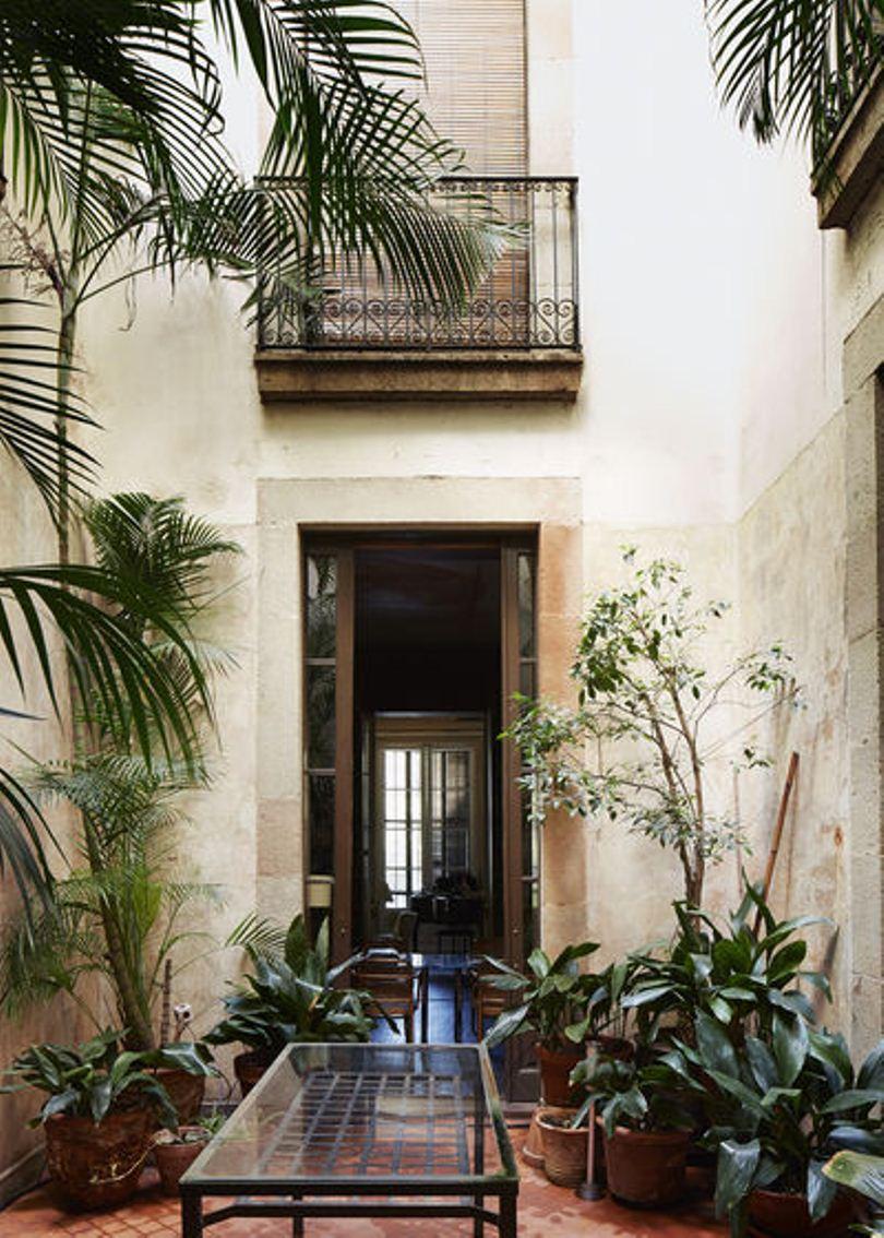 Внутренний двор с растениями