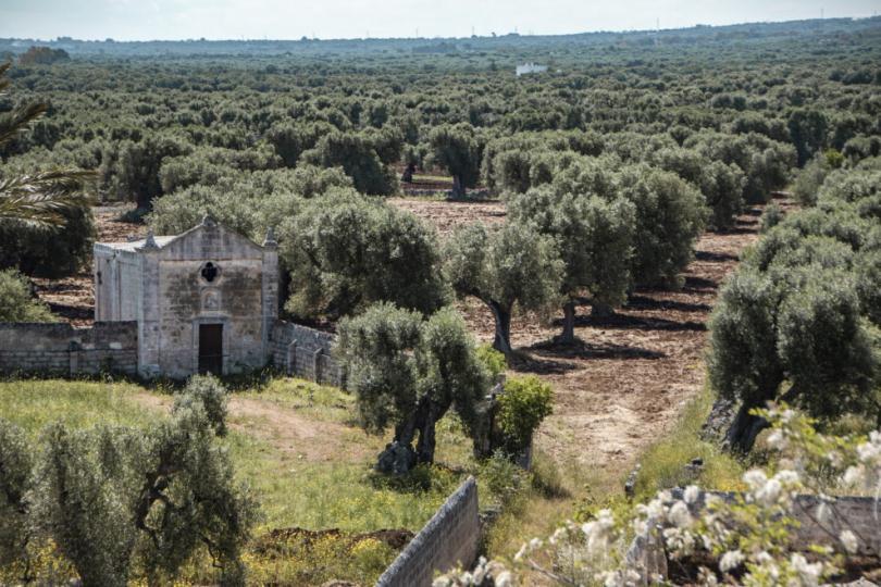 Каменная крепость