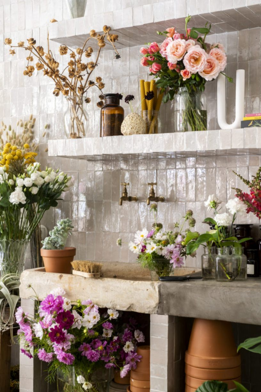 Раковина и цветы